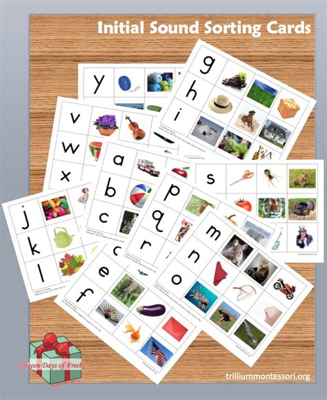 printable montessori language cards 17 best images about montessori language on pinterest
