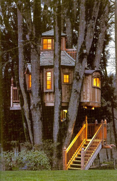 live in tree house pictures tree houses to live in thesilverpen com