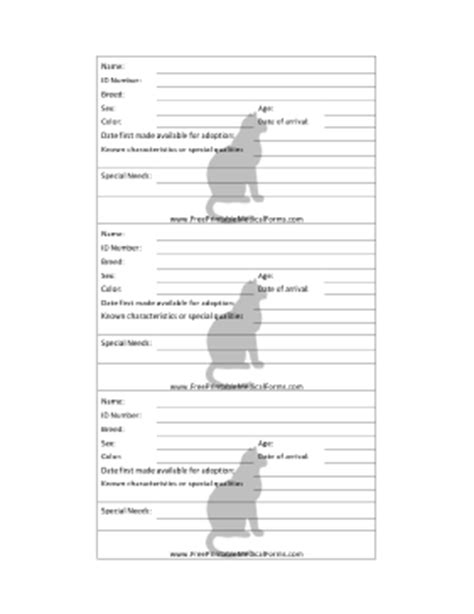 kennel cage card template printable cat adoption 3x5 cage card