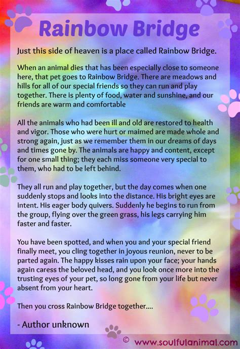 rainbow bridge poem rainbow bridge poem for pet loss soulful animal