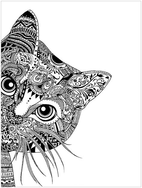 pages cat head animals coloring pages for adults