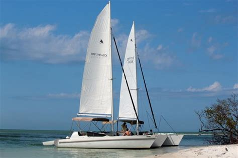 catamaran sailing marco island marco island sailing catamaran charter things to do for