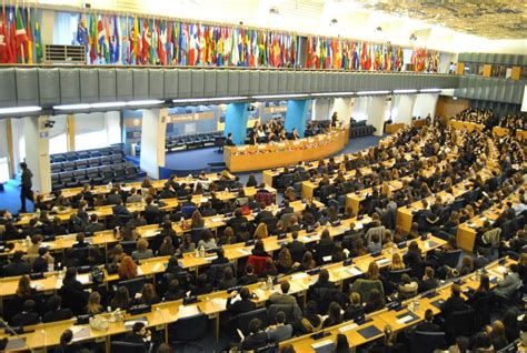 fao sede roma notizie model united nations in italia un guest post