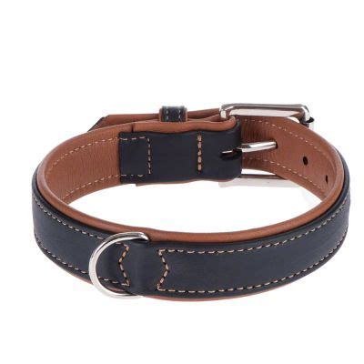 most comfortable collars uk canadian collar great deals at zooplus