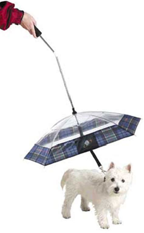 puppy umbrella umbrella leash the green
