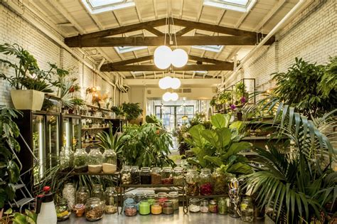 12 places for gardening plant and flowers classes in nyc