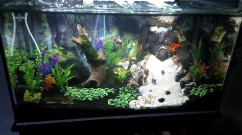 membuat hiasan aquascape hiasan aquarium air terjun denah rumah