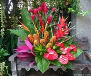 tropical flower arrangements centerpieces tropical vase arrangement julie s flower shoppe