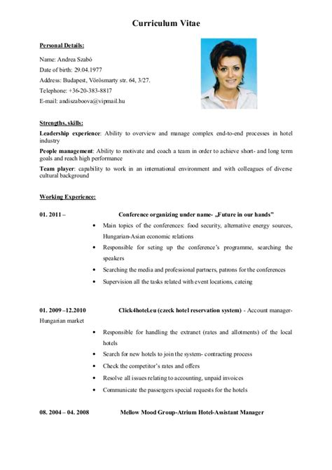 format cv in english english cv vitae