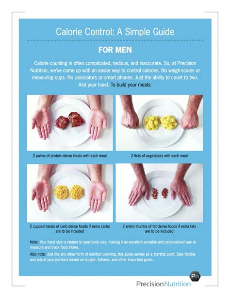 portion template use your to easily plan proper meal portions