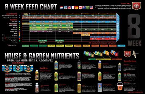 feeding schedules aggressive garden