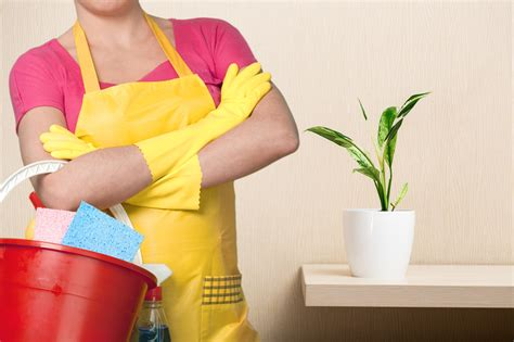house cleaning service house cleaning a 1 squeaky clean maid service