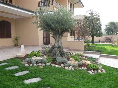 Beautiful Aiuole Giardino Idee #2: decorazione-albero-di-ulivo-12.jpg