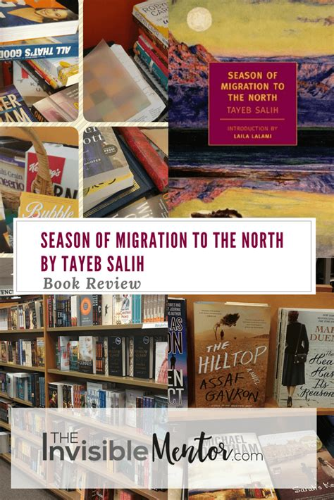 season of migration to season of migration to the north by tayeb salih review