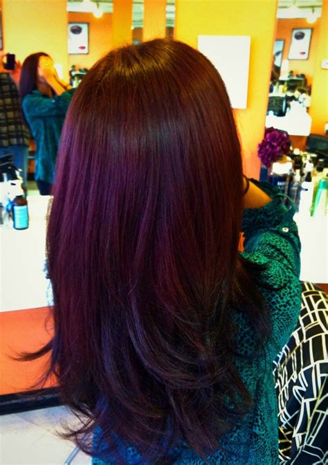 what hair dye color is plum brown lovin the plum color over brown hair looove pinterest