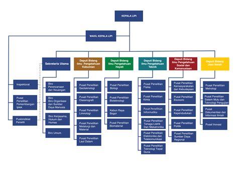 hubungan struktur dan desain organisasi struktur organisasi lembaga ilmu pengetahuan indonesia