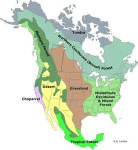 Biome Map Of North America by North American Biomes Worksheet Abitlikethis