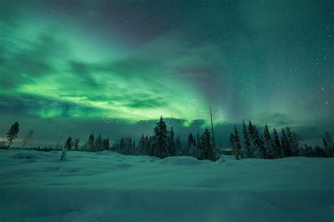 finland in december northern lights borealis northern lights in finland lapland