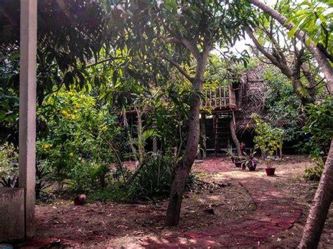 cottages in pondicherry near the cottage resort pondicherry photos