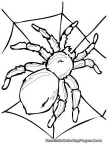 insect coloring pages free coloring pages of insect