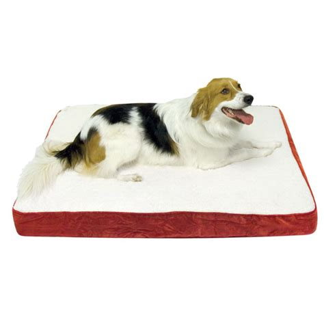 orthopedic dog bed oscar orthopedic dog bed