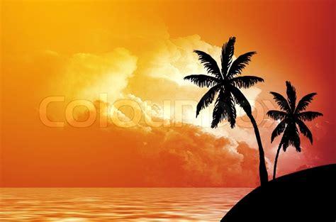 silhouette  palm trees  seacoast  sunset stock