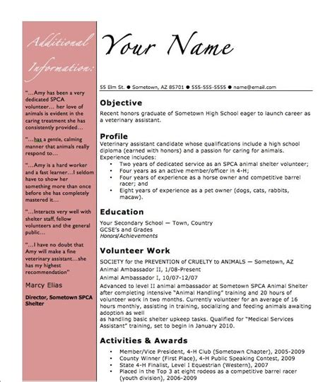 Grade 9 Resume Template by High School Curriculum Exle 1000 Ideas About High