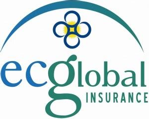 Small Homeowners Insurance Companies Ec Global Launches All In One Insurance Policy For Small