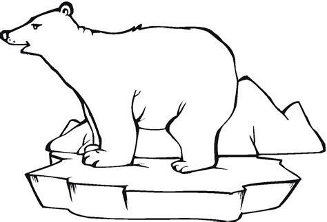 simple bear coloring page simple polar bear coloring pages coloringsuite com