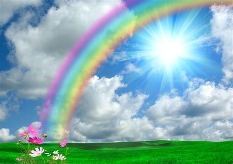 imagenes de flores multicolores so 241 ar con arco 237 ris que significa