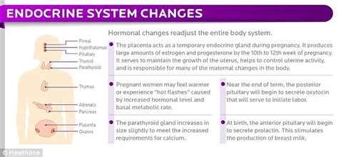 how your hair is different during pregnancy today s parent from head to toe the dozens of different ways pregnancy