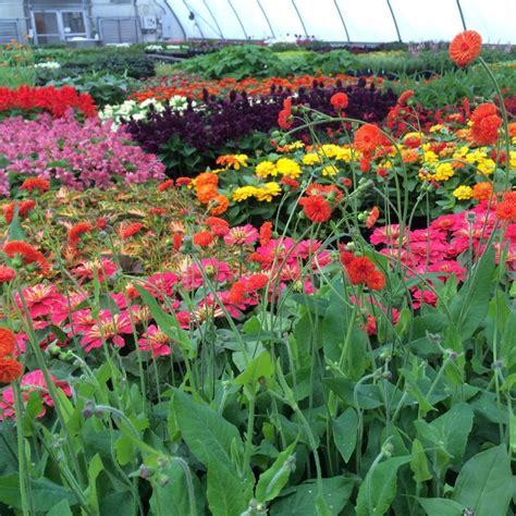 powell botanical gardens mission vision powell gardens kansas city s botanical