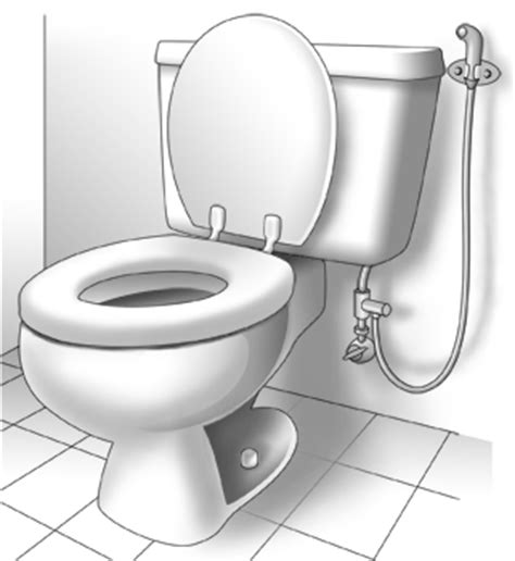 Bidet Shower Toilet Bridget Of Arabia Ode To The Hygiene Hose