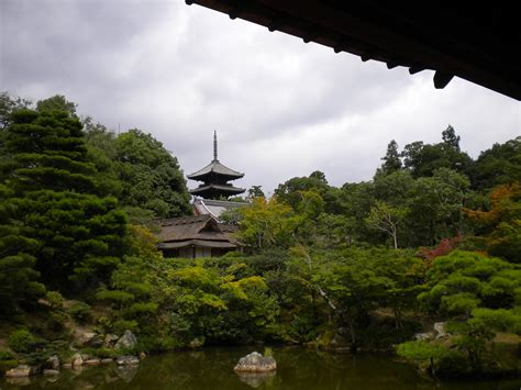 giappone giardini giardini tempio ninna ji di kyoto viaggi vacanze e