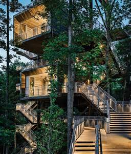 treehouse house boy scouts sustainability tree house
