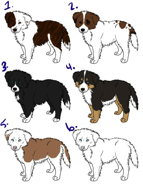 how to a border collie puppy border collie puppy drawing www imgkid the image kid has it