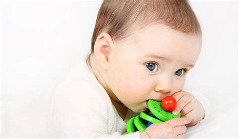 do babies see color which colours do babies wooden toys selecta