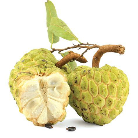 does a pinha fruta do conde a quitanda