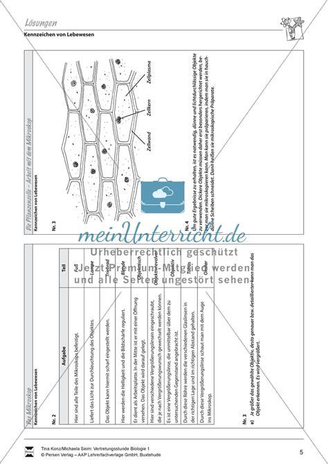 Beschriftung Zwiebelzelle by Pflanzenzelle Zellgewebe Der Zwiebel Zwiebelhaut Unterm