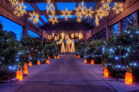 christmas light tours wichita ks botanica wichita attractions