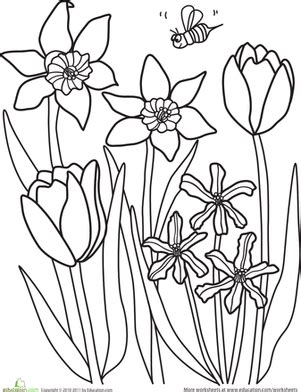 spring coloring pages for middle school color the spring flowers worksheet education com