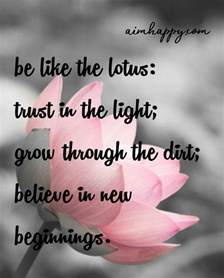 Lotus Quotes 20 Lotus Flower Quotes To Inspire New Growth