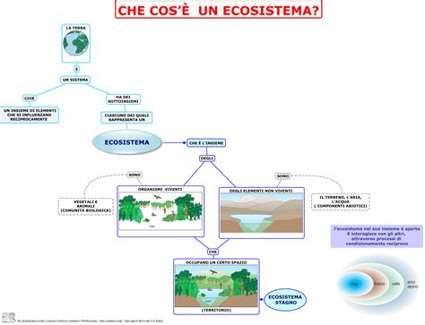 ecosistema siamo in quinta