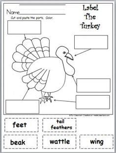 printable turkey parts spider printable worksheets and worksheets on pinterest