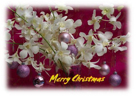 christmas cards printable
