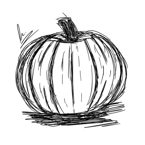 pumpkin sketches pumpkin sketch by garabelle on deviantart
