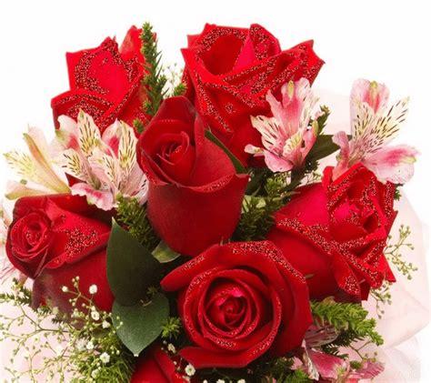 Imagenes De Flores Whatsapp | imagenes de flores para felicitar por whatsapp