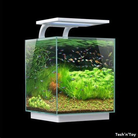 Lu Led Aquarium Mini sunsun hkl 250 mini glass aquarium kit w led light 4