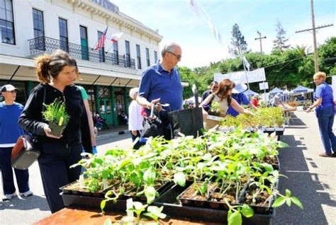 Friends Of Master Gardeners Of Santa Clara County Stage   friends of master gardeners of santa clara county stage