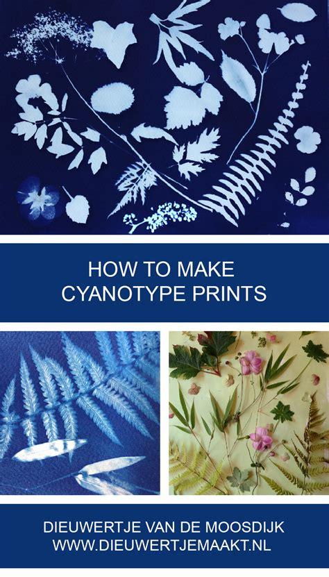 How To Make Cyanotype Paper - newsletter dieuwertjemaakt